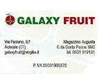 logo Galaxy Fruit S.r.l.